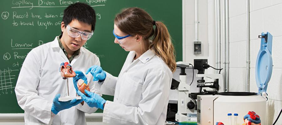 Étudiant travaillant dans un laboratoire.