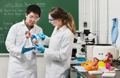 A student showing something to another student in a lab