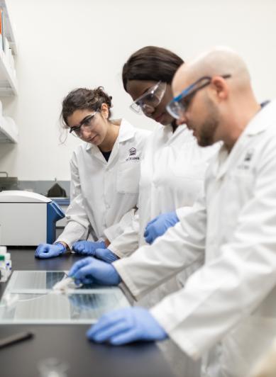 Trois chercheurs travaillant dans un laboratoire
